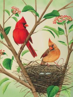 Northern Cardinals Birds Jigsaw Puzzle