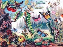 Metamorphosis Butterflies and Insects Jigsaw Puzzle