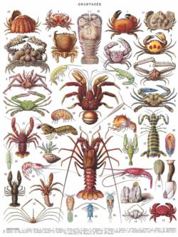 Crustaceans ~ Crustacés Under The Sea Jigsaw Puzzle
