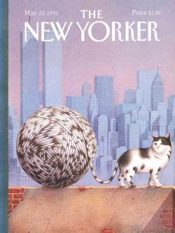 Cat Walk New York Jigsaw Puzzle