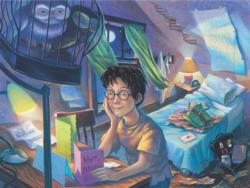 Counting the Days Harry Potter Jigsaw Puzzle