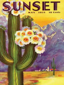 Cactus Blooms Plants Jigsaw Puzzle