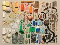 Beachcomber Collection Collage Jigsaw Puzzle