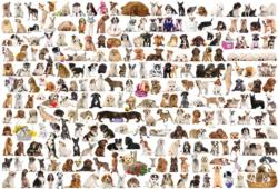 The World of Dogs Pattern / Assortment Jigsaw Puzzle