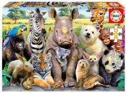 It's a Class Photo Animals Children's Puzzles