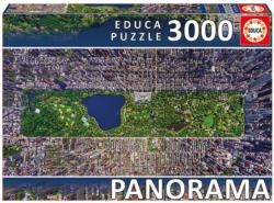 Central Park, New York Cities Panoramic Puzzle