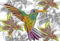 Hummingbird Flowers Coloring Puzzle