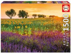 Fields of Sunflowers Sunflower Jigsaw Puzzle