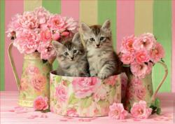Kittens With Roses Flowers Jigsaw Puzzle
