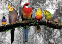 Birds On The Jungle Photography Jigsaw Puzzle