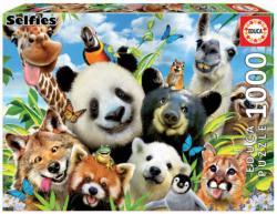 Llama Drama Selfie Animals Jigsaw Puzzle