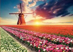 Tulips Landscape Flowers Jigsaw Puzzle