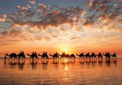 Golden Sunset On Cable Beach, Australia Sunrise / Sunset Jigsaw Puzzle