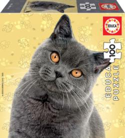 British Shorthair Cats Jigsaw Puzzle