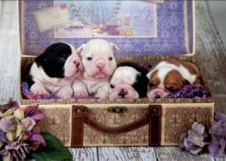 Puppies Dogs Jigsaw Puzzle