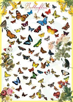Butterflies Educational Jigsaw Puzzle