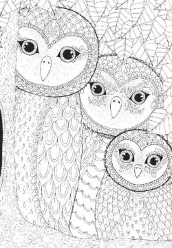 Coloring Owls Family Adult Coloring Coloring Puzzle