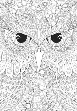 Coloring Night owls Adult Coloring Coloring Puzzle