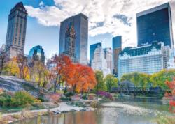 NY Central Park New York Jigsaw Puzzle