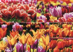 Holland Tulips Collage Jigsaw Puzzle