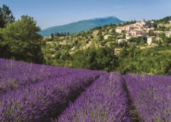 Provence, Aurel Flowers Jigsaw Puzzle