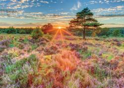 Heather at Sunset Sunrise / Sunset Jigsaw Puzzle