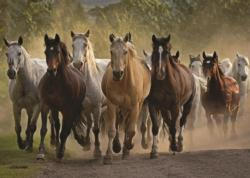 Team of Horses Horses Jigsaw Puzzle