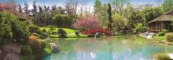 Colourful Garden Lakes / Rivers / Streams Panoramic Puzzle