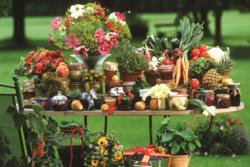 Fruit and Vegetables Plants Jigsaw Puzzle