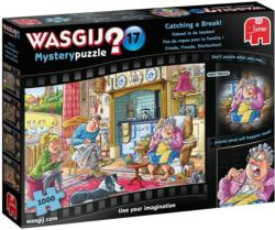 Wasgij Mystery 17: Catch a Break Domestic Scene Jigsaw Puzzle