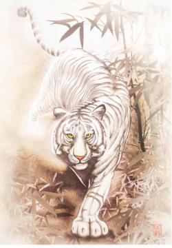 Tiger Tigers Jigsaw Puzzle