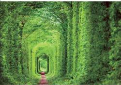Tunnel Of Love Photography Jigsaw Puzzle