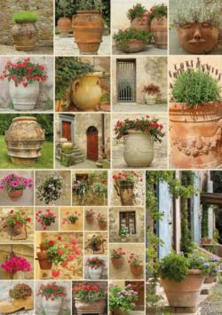 Clay Pots with Flowers Collage