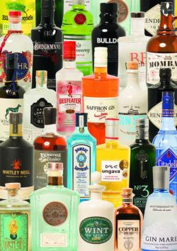 Taste of Gin Adult Beverages Jigsaw Puzzle