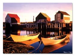 Golden Docks Boats Jigsaw Puzzle