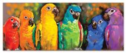 Parrot Rainbow Birds Jigsaw Puzzle
