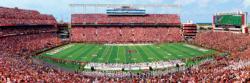 University of South Carolina Football Panoramic Puzzle