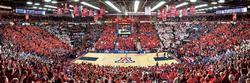 University of Arizona Sports Panoramic
