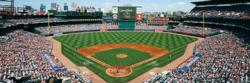 Atlanta Braves Photography Panoramic Puzzle