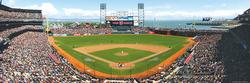 San Francisco Giants (Panoramic Puzzle) Sports Panoramic