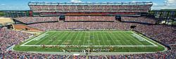 New England Patriots Sports Panoramic