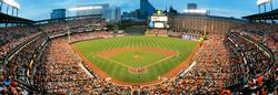 Baltimore Orioles - Scratch and Dent Sports Panoramic Puzzle
