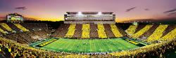 University of Iowa Father's Day Panoramic Puzzle