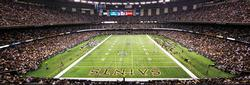New Orleans Saints Sports Panoramic