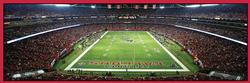 Atlanta Falcons Sports Panoramic