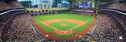 Houston Astros Baseball Panoramic