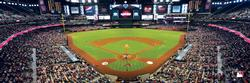 Arizona Diamondbacks Baseball Panoramic