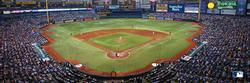 Tampa Bay Rays Baseball Panoramic