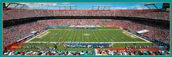 Miami Dolphins Sports Panoramic
