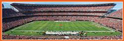 Cleveland Browns Sports Panoramic Puzzle